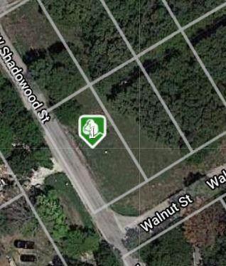 2816 Walnut Street, Granbury, TX 76048 (MLS #14585072) :: The Juli Black Team