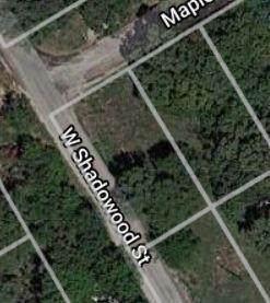 2819 Maplewood Street - Photo 1