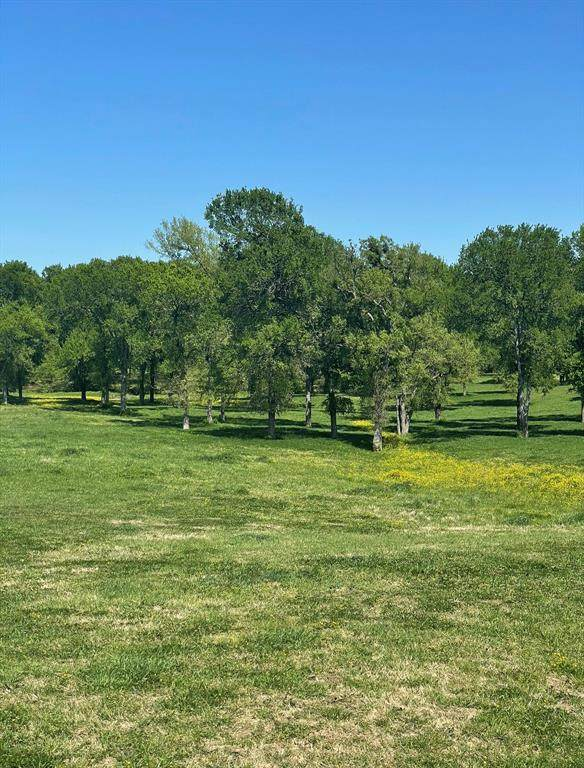 TBD 15 Vz Cr 3820, Wills Point, TX 75169 (MLS #14585314) :: Craig Properties Group