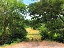5605 S Hwy 69, Lone Oak, TX 75453 (MLS #14588170) :: Real Estate By Design
