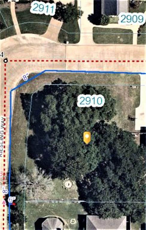 2910 Zinfandel Lane, Arlington, TX 76001 (MLS #14589308) :: Real Estate By Design