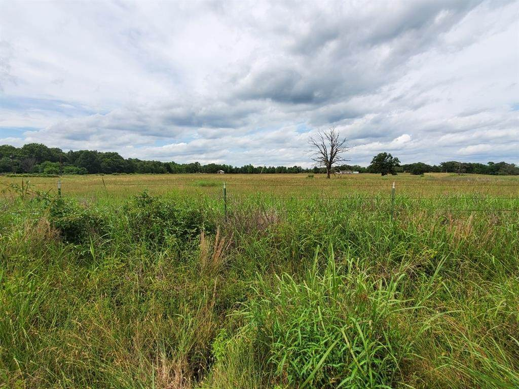 Tract 2 Vz County Road 4305 - Photo 1