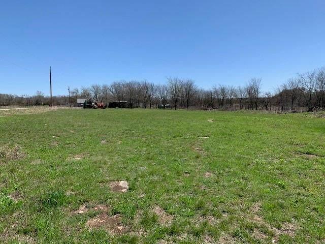 200 N Farm Road 1744, Carlton, TX 76436 (MLS #14593884) :: The Juli Black Team