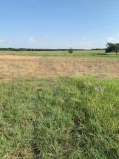 LOT 16 Monarch Court, Poolville, TX 76487 (MLS #14593893) :: Craig Properties Group