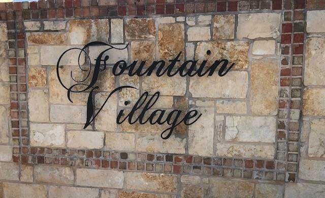 3202 Fountain Way, Granbury, TX 76049 (MLS #14595825) :: Real Estate By Design