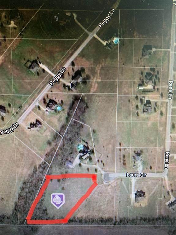 TBD Laura Circle, Gunter, TX 75058 (MLS #14596808) :: The Mike Farish Group