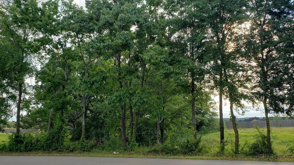 17950 County Road 122 - Photo 1