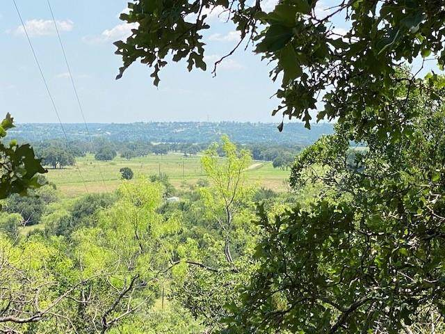 133 Dobbs Valley Spur, Mineral Wells, TX 76067 (MLS #14604888) :: All Cities USA Realty