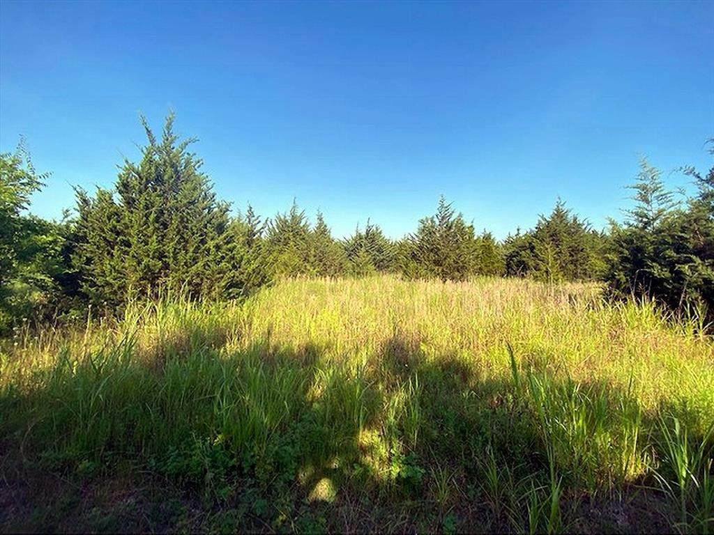 TBD County Road 4430 Ns - Photo 1