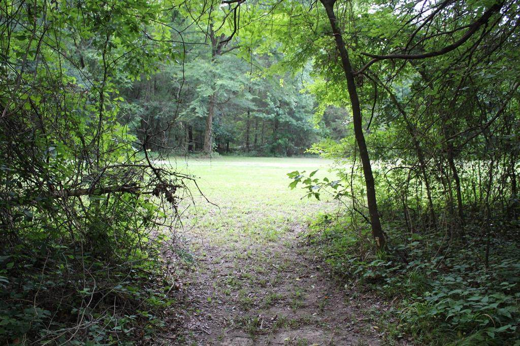 TRACT 1 County Road 2392 - Photo 1