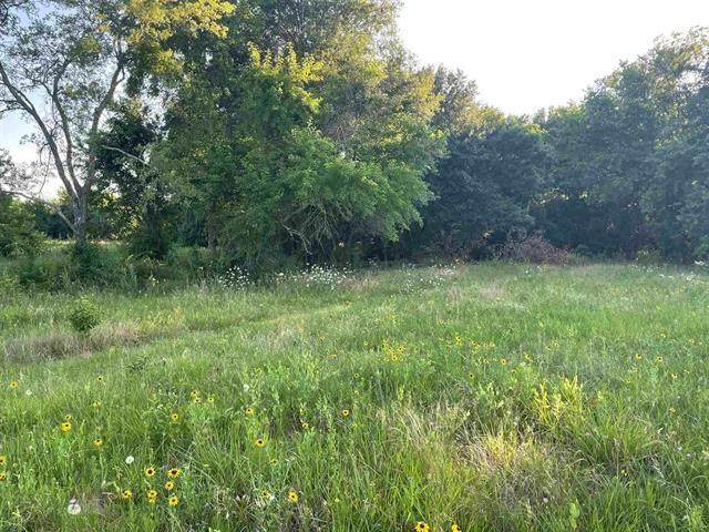 xxx County Road 33010, Brookston, TX 75421 (MLS #14606394) :: Real Estate By Design