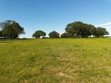 TBD Roth Road, Bowie, TX 76230 (MLS #14608955) :: Real Estate By Design