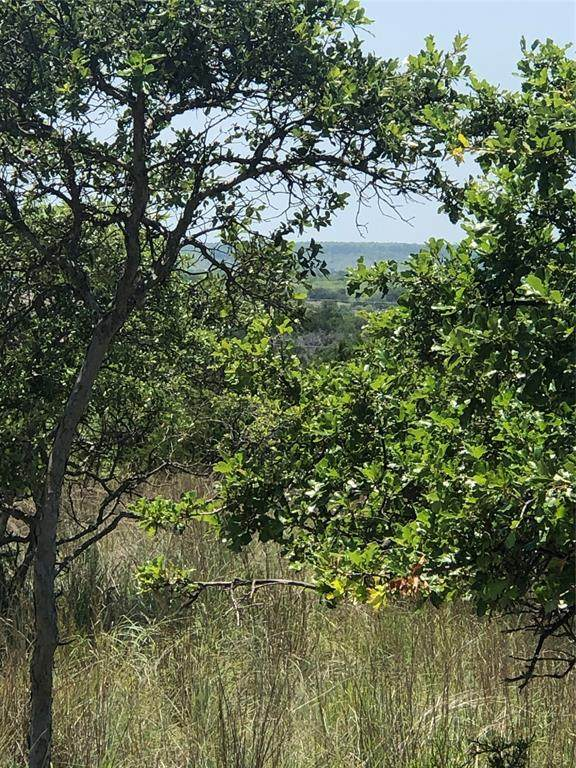 lot 205 Harbour Town Drive, Possum Kingdom Lake, TX 76449 (MLS #14609050) :: All Cities USA Realty