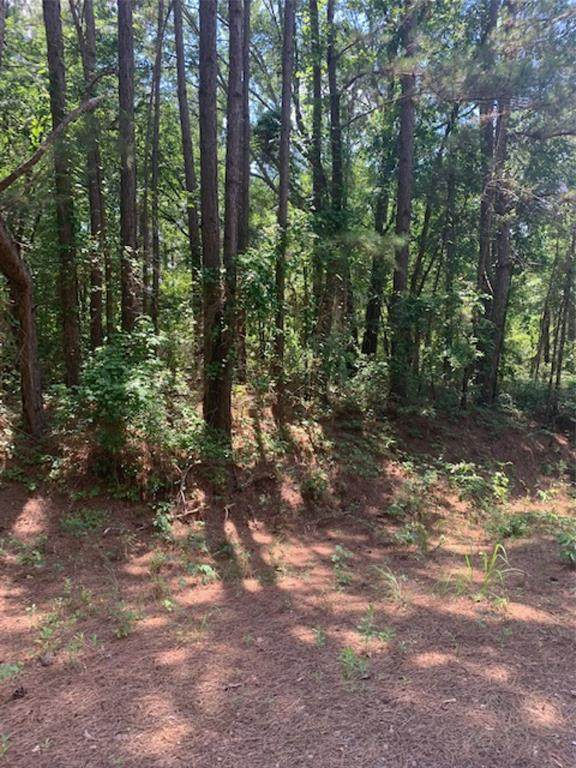Tract 2 County Road 245 S - Photo 1