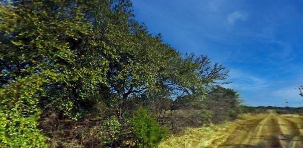 12143 Trailwood Drive - Photo 1