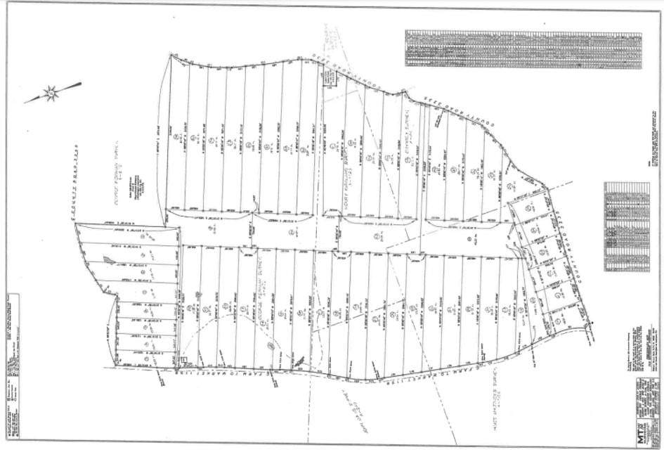 TBD Tract 37A & 38 Cr 3235 - Photo 1