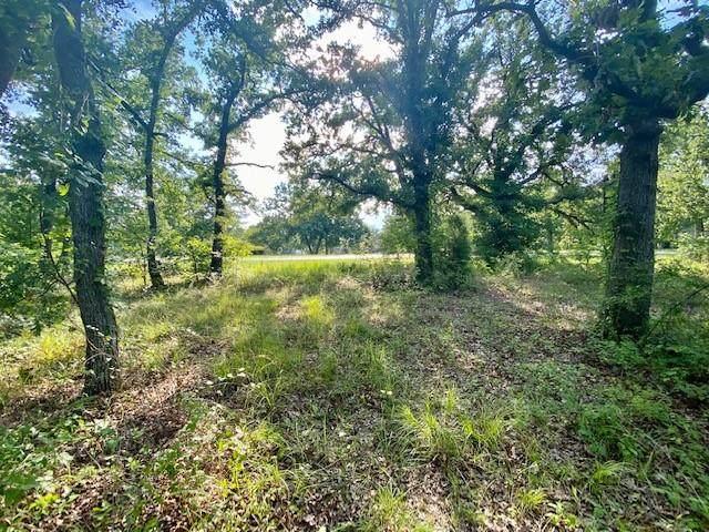 52 Point La Vista, Malakoff, TX 75148 (MLS #14619229) :: The Property Guys