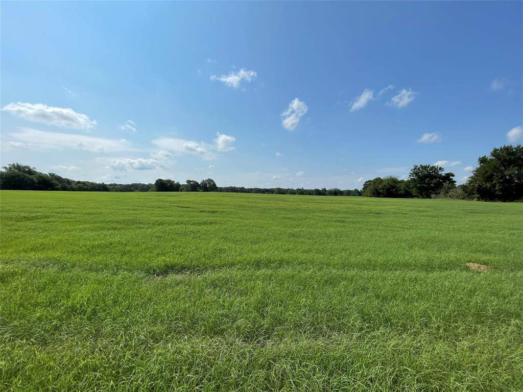 231 Rs County Road 2410 - Photo 1