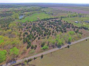 3680 Rochell Cannon Road, Bells, TX 75414 (MLS #14623922) :: The Mitchell Group