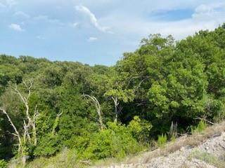 0 County Road 334, Gainesville, TX 76234 (MLS #14626199) :: The Chad Smith Team