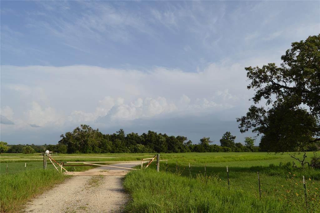 TBD Farm To Market 489 - Photo 1