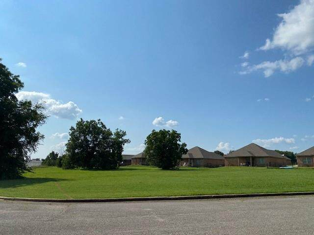 2 Acres Darter Drive, Pottsboro, TX 75076 (#14630244) :: Homes By Lainie Real Estate Group