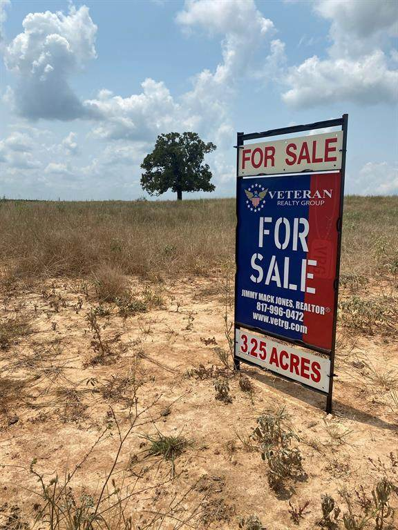 TBD Lot 15 Monarch Court, Poolville, TX 76487 (MLS #14630381) :: Real Estate By Design