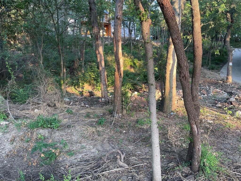 1516 Oakhurst Scenic Drive - Photo 1