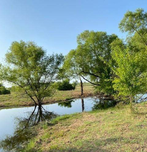 3340 County Road 613, Farmersville, TX 75442 (MLS #14634434) :: Real Estate By Design