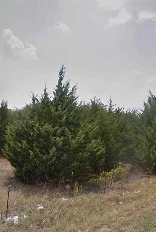TBD Wood, Princeton, TX 75407 (MLS #14634902) :: Robbins Real Estate Group