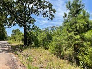 Lot 3 Fm 556, Pittsburg, TX 75686 (MLS #14635695) :: Real Estate By Design
