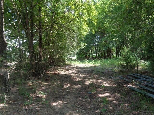 TBD County Road 4730 - Photo 1
