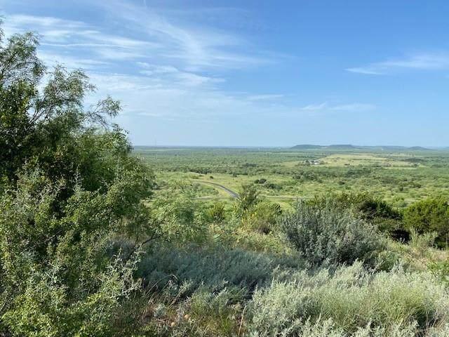 Lot 92R Raven Court, Possum Kingdom Lake, TX 76449 (MLS #14636963) :: Trinity Premier Properties