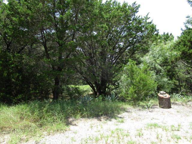 10055 Bluffview Court, Whitney, TX 76692 (MLS #14637446) :: Real Estate By Design