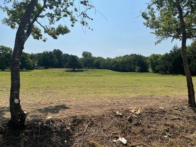 TBD W Lot 3 Massey Road, Pilot Point, TX 76258 (MLS #14638166) :: The Star Team | Rogers Healy and Associates
