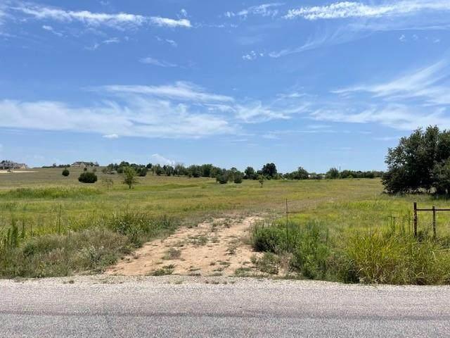 124 Aviara Ridge Road, Poolville, TX 76487 (MLS #14638205) :: Robbins Real Estate Group