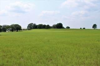 15431 County Road 424 - Photo 1