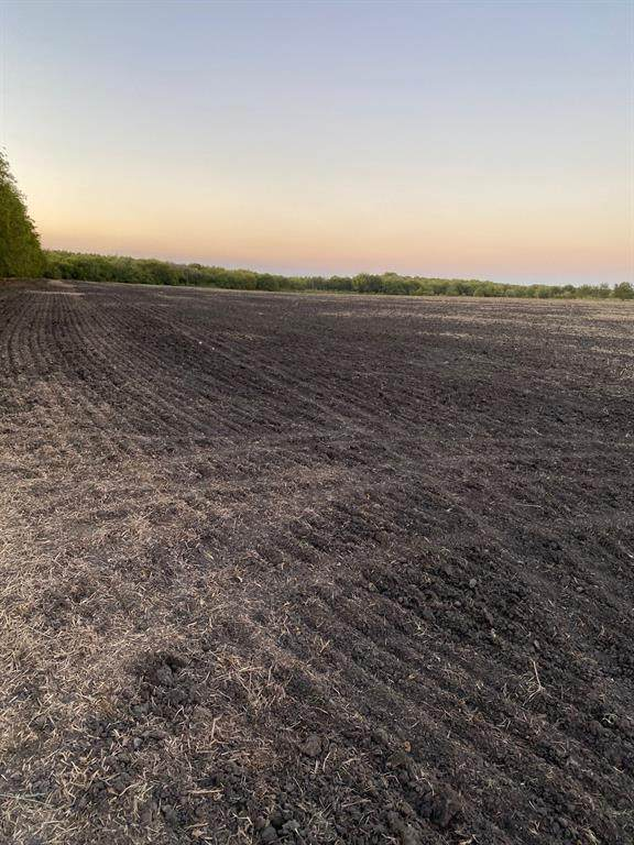 TRACT-4 County Rd 4410 - Photo 1