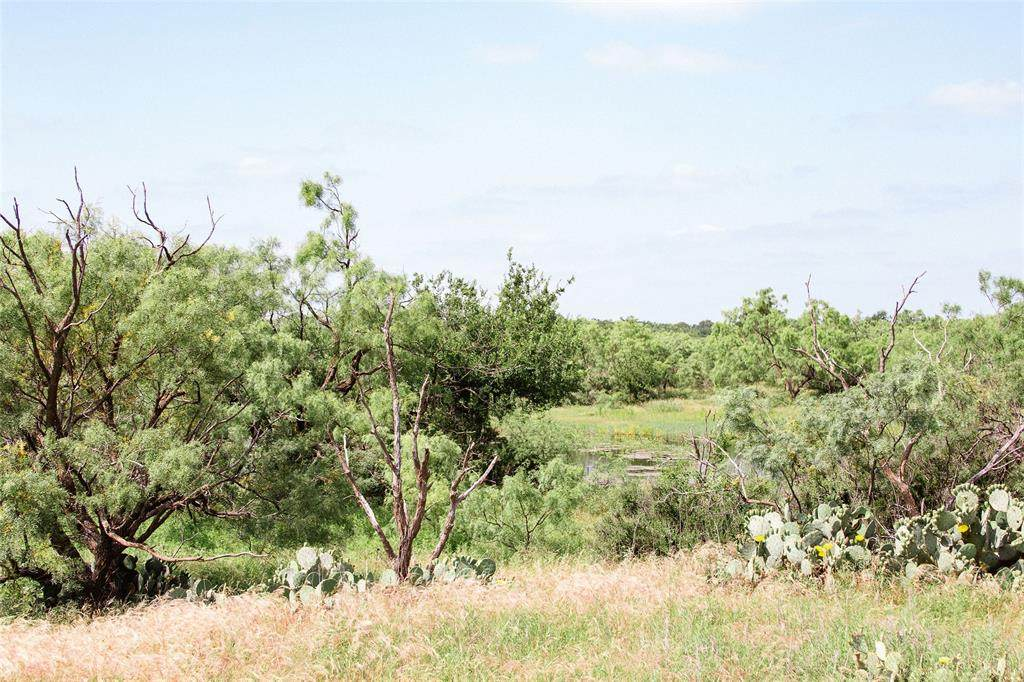 1 TBD County Road 376 - Photo 1