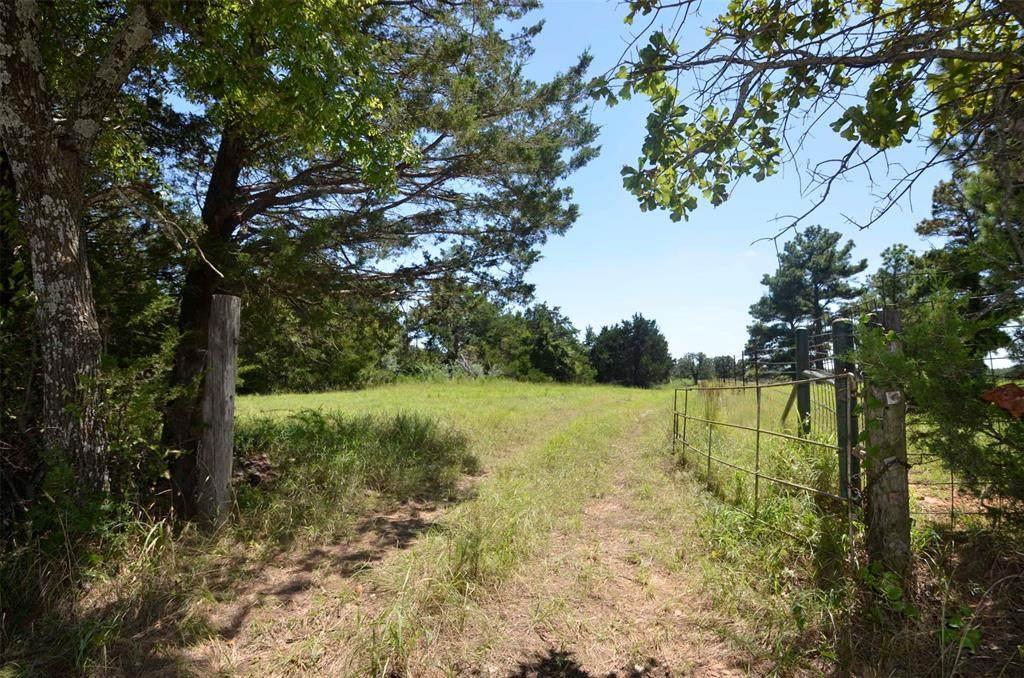 50 Ac County Road 130 - Photo 1