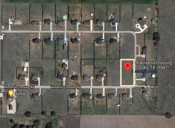 309 Windmill Crossing Road, Ovalo, TX 79541 (MLS #14652664) :: The Russell-Rose Team