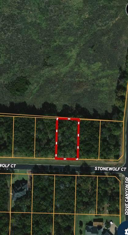 104A Stonewolf Court, Gordonville, TX 76245 (MLS #14657146) :: Robbins Real Estate Group