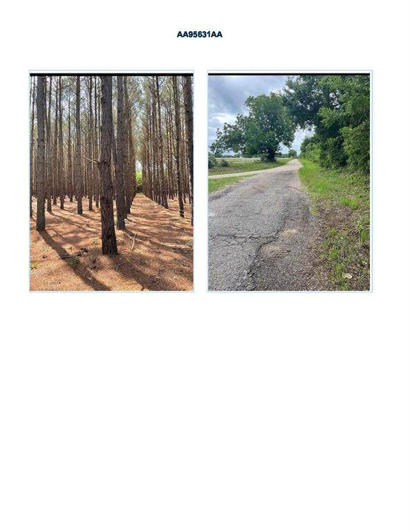 0 County Road 4712 Road, Larue, TX 75770 (MLS #14658207) :: Real Estate By Design
