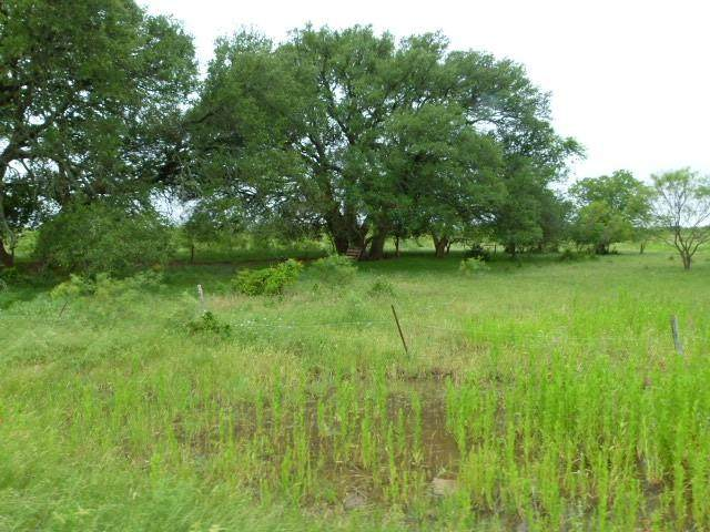 90 W Fm 218, Comanche, TX 76442 (MLS #14670083) :: Russell Realty Group