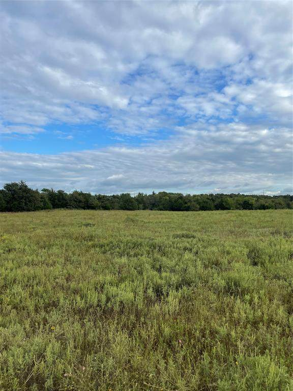 2014 County Road 178, Gainesville, TX 76240 (MLS #14670613) :: Frankie Arthur Real Estate