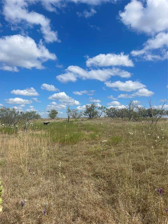 TBD Greenwood Road, Comanche, TX 76442 (MLS #14672057) :: Robbins Real Estate Group