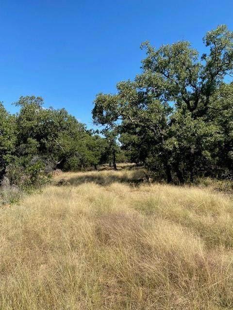 0003 Clayton Mountain Road, Gordon, TX 76453 (MLS #14672567) :: Craig Properties Group