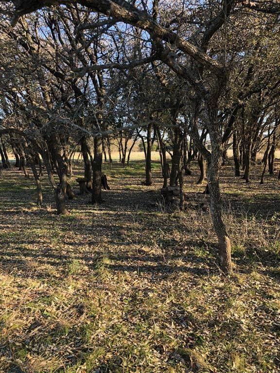 17002 Trailwood Drive, Whitney, TX 76692 (MLS #14673467) :: ACR- ANN CARR REALTORS®