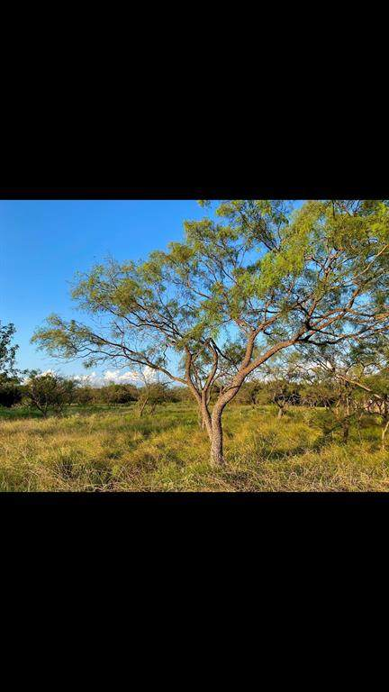 1385 Eagle Pass, Royse City, TX 75189 (MLS #14674310) :: Real Estate By Design
