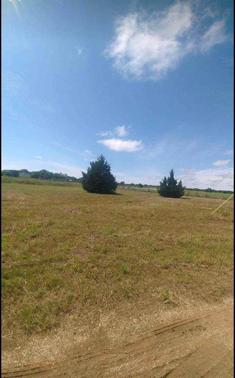 248 County Road 1787, Chico, TX 76431 (MLS #14675284) :: VIVO Realty